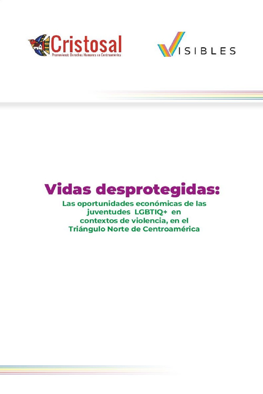 Unprotected Lives: Economic Opportunities for LGBTIQ + Youth in Contexts of Violence, in the Northern Triangle of Central America (Spanish)